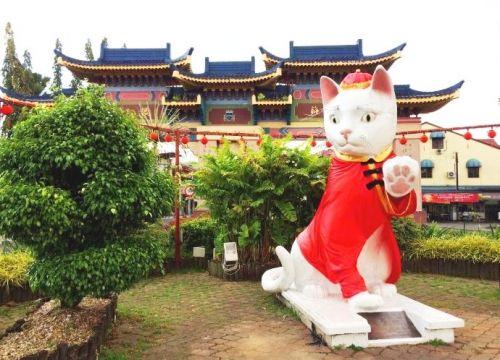 """古晋 """"大马""""热带雨林中的浪漫猫城"""