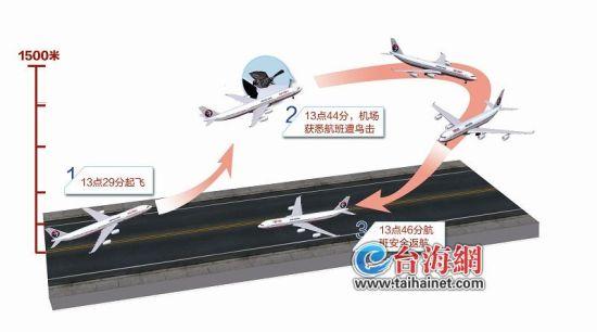 东航飞机千米高空遭鸟撞击