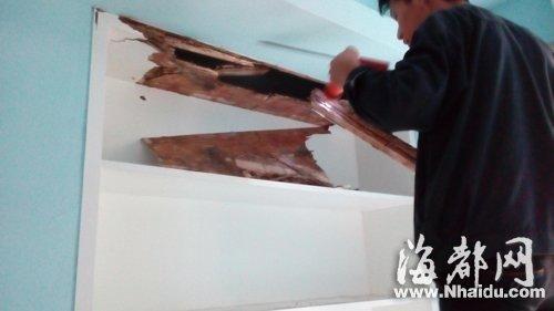 木柜子深受白蚁之害