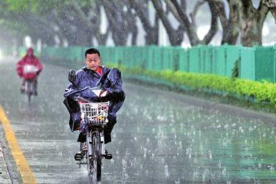 昨日,厦门遭遇暴雨天气,市民冒雨在思明区湖滨北路骑行新华社/图