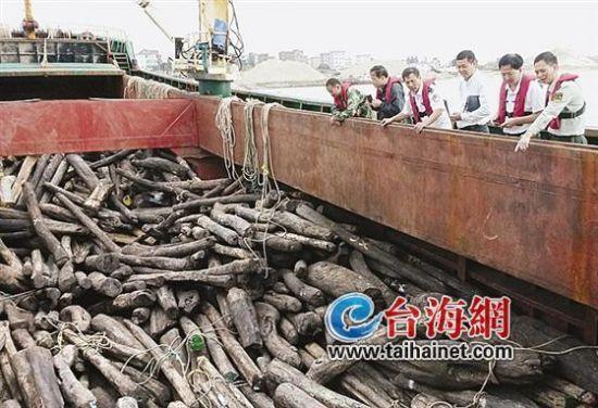 福州海关破获特大红木走私案 案值7000多万