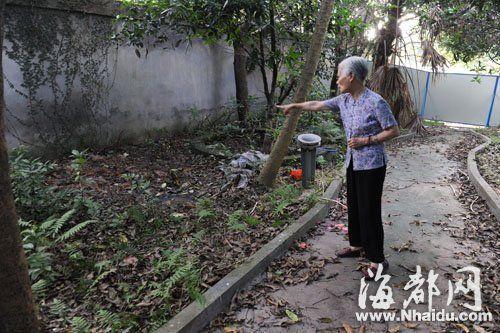 工地内挖出的骸骨被埋到宿舍区后花园,居民心慌