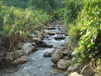 天竺山森林公园