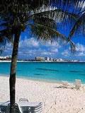 浪漫伊甸园 加勒比