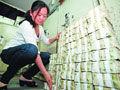 公交公司存5万张1元纸币 银行吓到报警