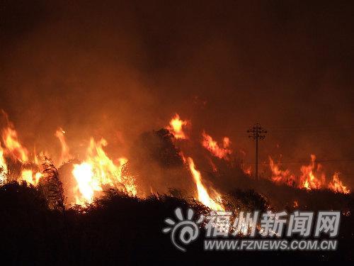 电线杆被火包围
