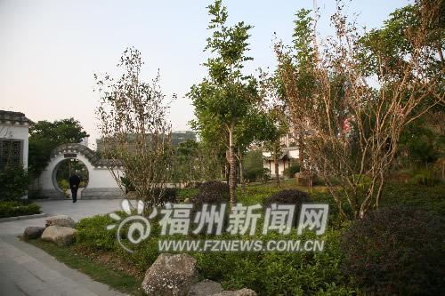 引种百年大红袍福州封面茶亭提升文化内涵(书四大名著公园图片