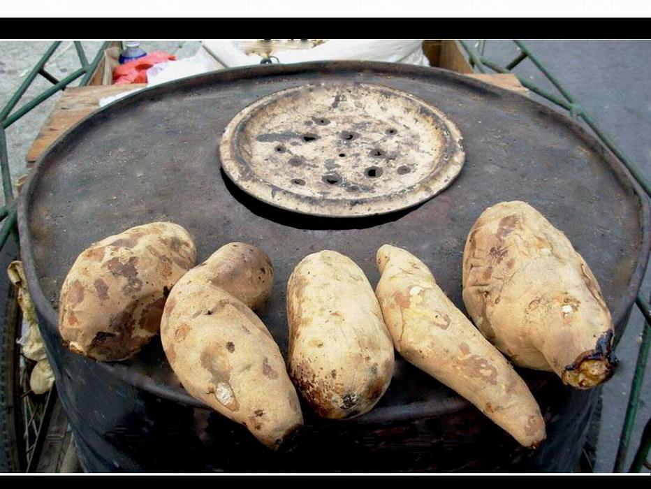 关键词:化工桶 黑斑病菌   罪状揭露:化工油桶改当烤炉烤红薯