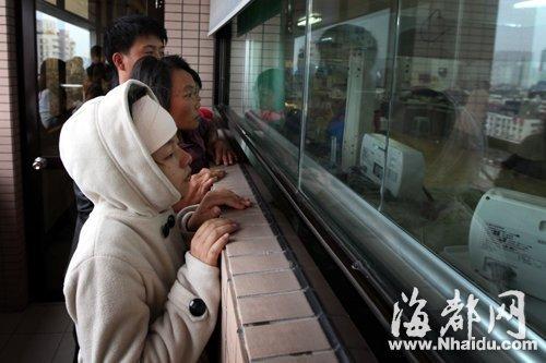 一家人只能隔着NICU病房的玻璃,看一眼三个早产的小生命