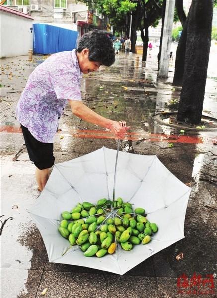 组图:福州昨日暴雨浇城五四路下起芒果雨