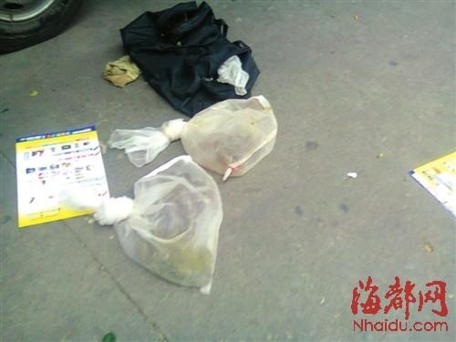 沿街叫卖的毒蛇,仅用尼龙袋装着