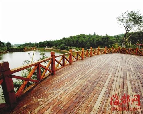 木栈道连接湖边观景台,走出林海,登上观景台,荡胸生层云