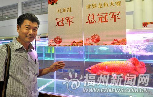 马来西亚陈亨华选送的血红龙获总冠军。