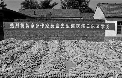 14日,莫言老家平安庄挂起祝贺获奖的条幅。新京报记者 陈杰 摄