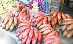 你见过红色香蕉吗?