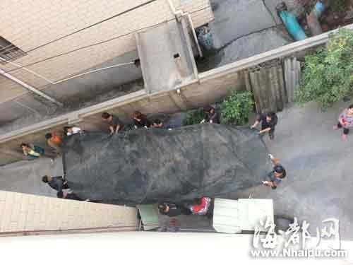 十多人拉起了渔网,随时准备接轻生女子