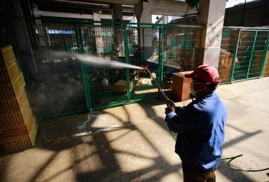 工人在对市场上的鸡笼进行消毒