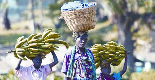 坦桑尼亚人吃香蕉