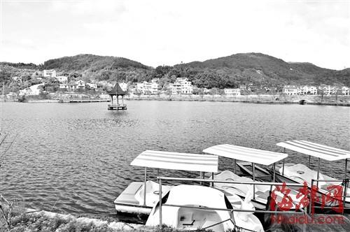 村中的人工湖波光粼粼,碧波荡漾