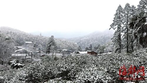 十八日上午武,夷山市星村镇,远村、竹林、群山落满雪花,宛如童话世界