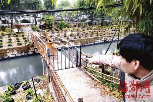 小郑的亲戚说,孩子是从便桥上不慎落水的