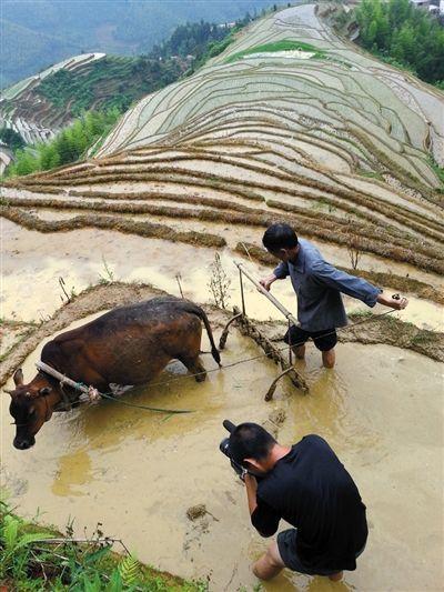 为了力求画面精美有料,《舌尖2》摄制组的足迹踏遍美丽中国