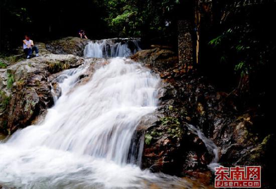 三明仙人谷国家森林公园7月1日重新开放迎客