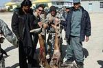 驻阿富汗美军曝辱尸丑闻 持死者断腿合影