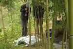 七旬老翁穿女性内衣曝尸荒野  凶手藏身山洞