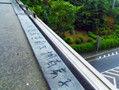 南京明城墙励志涂鸦
