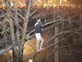 站街女遇警察爬树