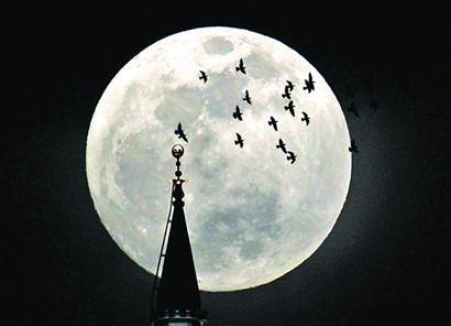 实拍各地超级月亮