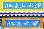 90后给北大送北京人大学牌匾 被警方拘留