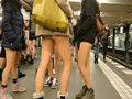 世界不穿裤子节