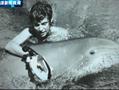 50年前英秘密实验 海豚爱上女孩发生性行为